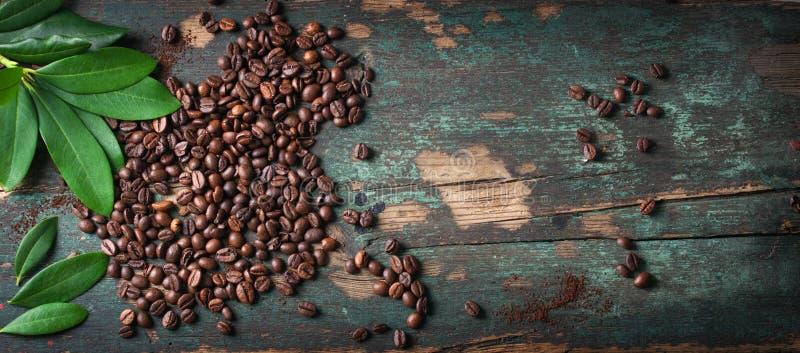 Grillade kaffebönor med gräsplansidor på en tappningbakgrund arkivfoto
