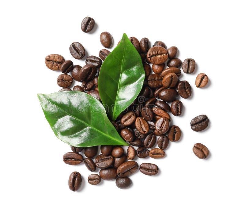 Grillade kaffebönor och gräsplansidor royaltyfri fotografi