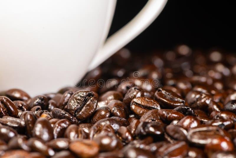 Grillade kaffebönor och kopp för vitt kaffe med svart bakgrund arkivbilder