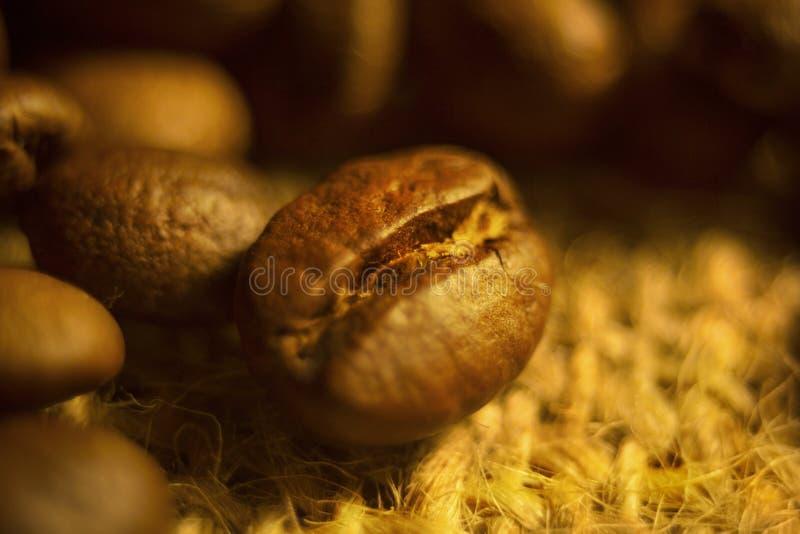 Grillade kaffebönor på en gul bakgrund arkivfoto
