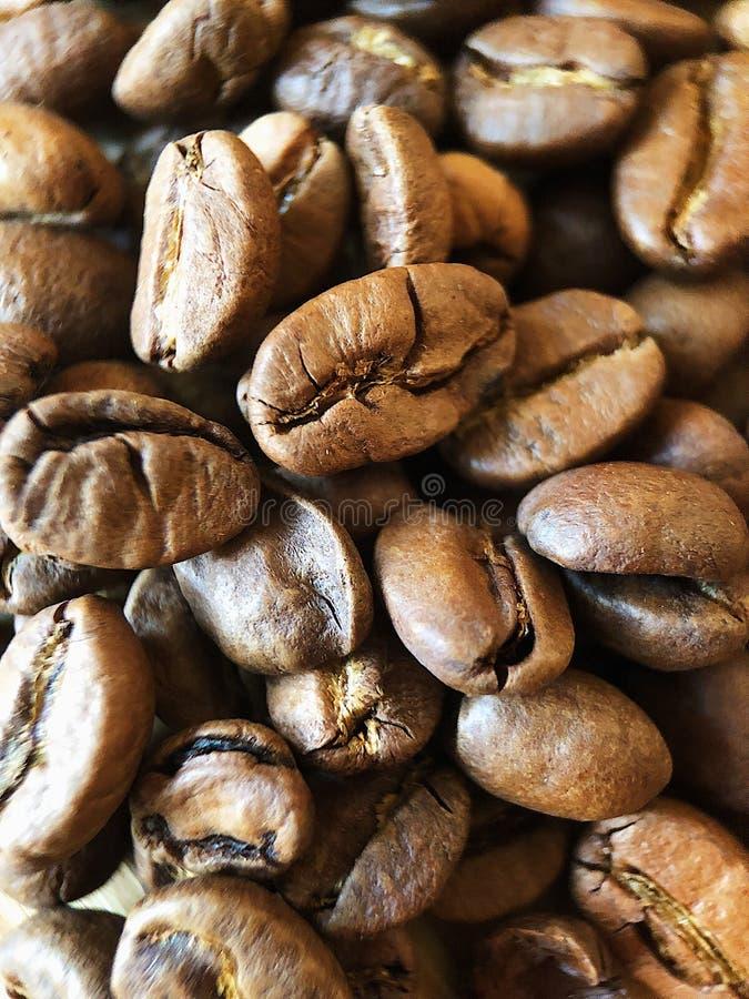 Grillade kaffebönor på tabellslutet upp arkivbilder