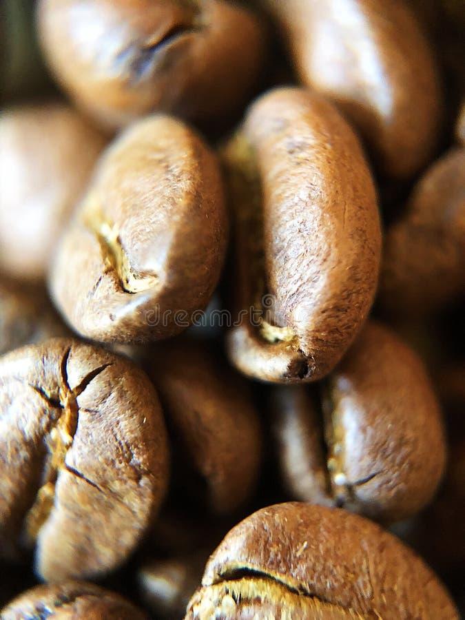 Grillade kaffebönor på tabellslutet upp arkivfoton