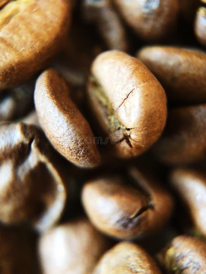 Grillade kaffebönor på tabellslutet upp arkivbild