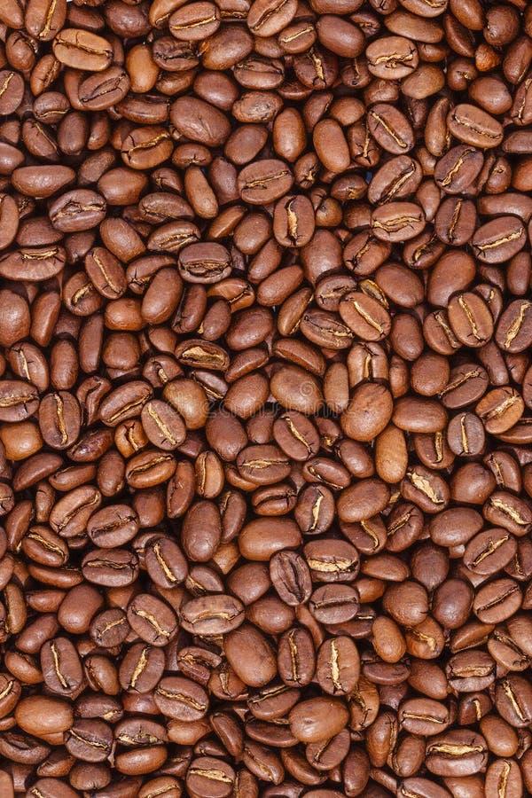 Grillade kaffeb?nor, kan anv?ndas som en bakgrund royaltyfri foto