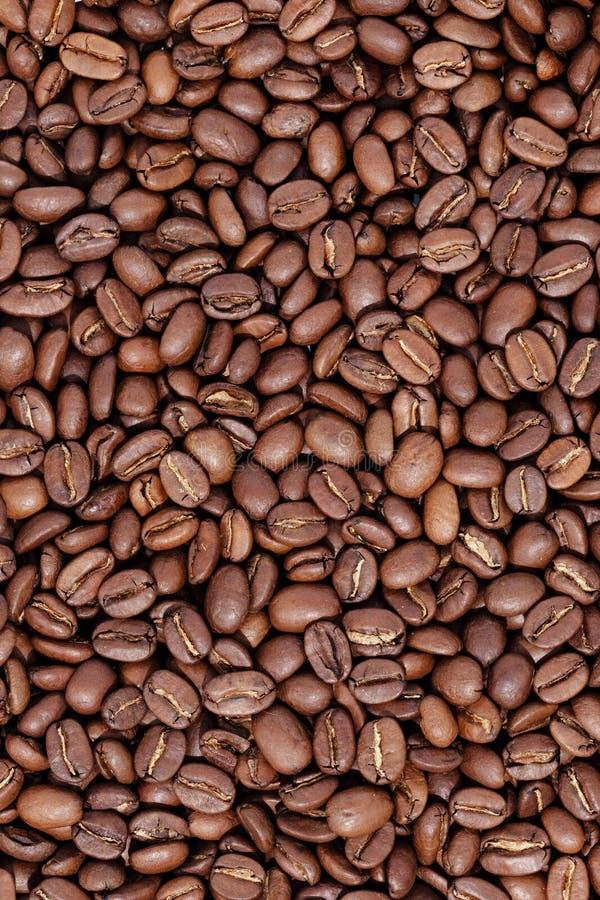 Grillade kaffeb?nor, kan anv?ndas som en bakgrund royaltyfria foton