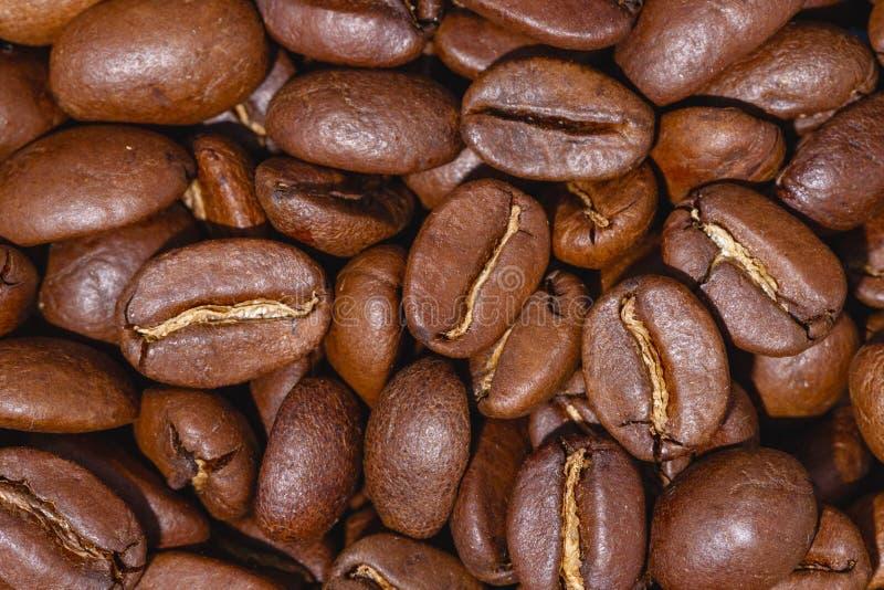 Grillade kaffeb?nor, kan anv?ndas som en bakgrund royaltyfri bild