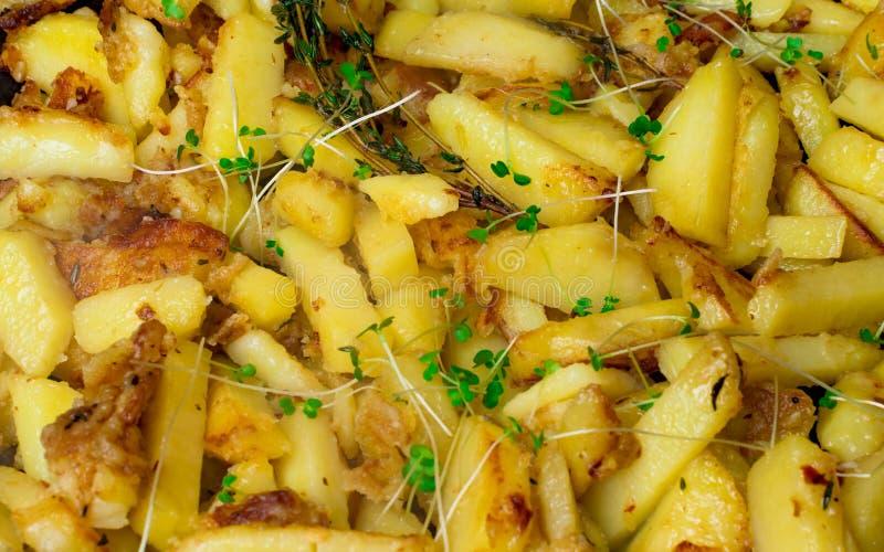 Grillade potatisar med rosmarin, havet saltar bakgrund royaltyfri bild