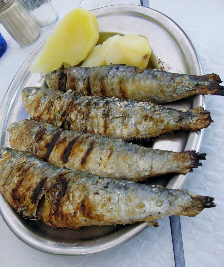 Grillade sardiner med kokta potatisar royaltyfria foton