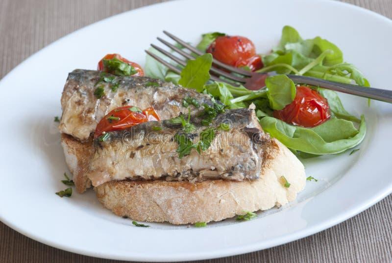 grillade sardines royaltyfri foto