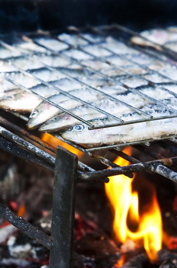 grillade sardines royaltyfri fotografi