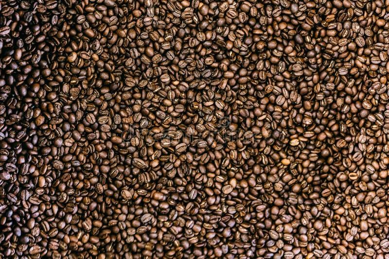 grillat bönakaffe royaltyfria bilder