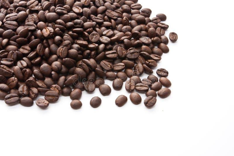 grillat brunt kaffe för bönor royaltyfri foto