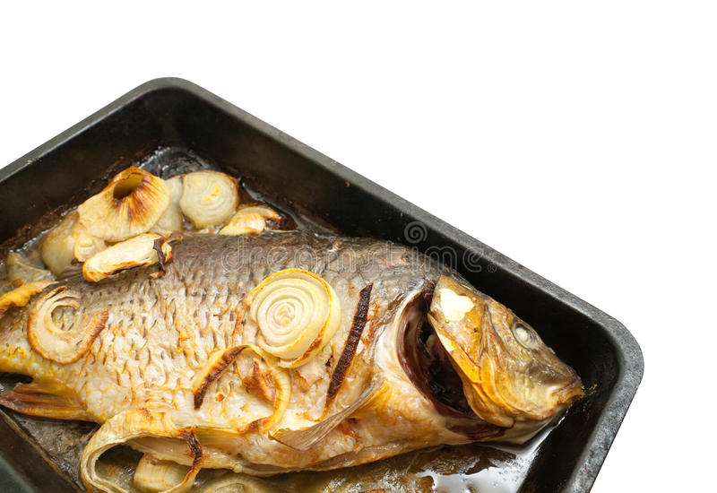 Grilled carp fish on the griddle. Closeup of grilled carp fish on the cook griddle royalty free stock images