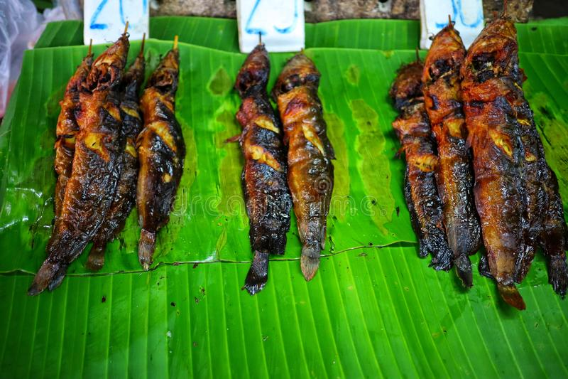 Grilled catfish is a popular fish.  Due to the cheap price and delicious taste, the top view royalty free stock images