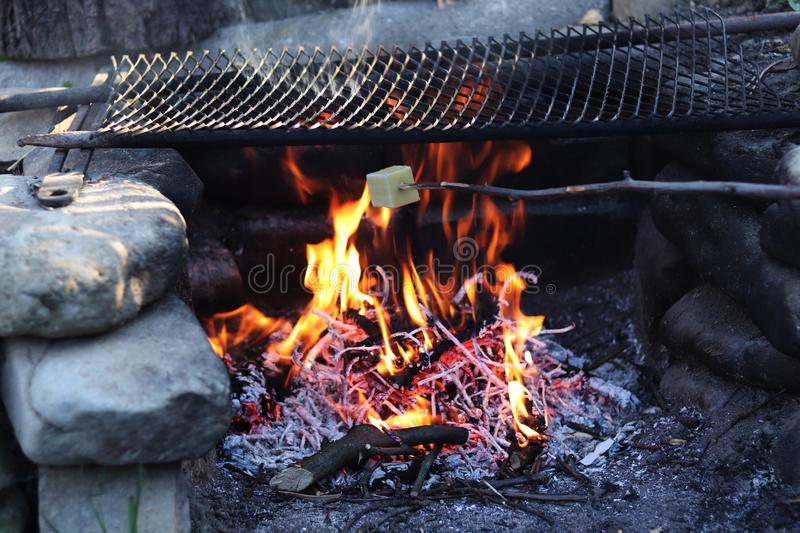 Grilled cheese. Frying piece of cheese on special wooden spiked stick. Wonderful flame with cinders. Black grate for meat royalty free stock photography
