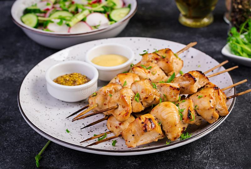Grilled chicken kebab and salad with cucumber, radish, onion. On a dark background stock photo