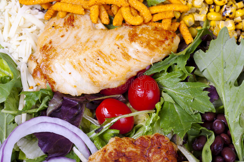Download Grilled chicken salad. stock photo. Image of lettuce - 21028382