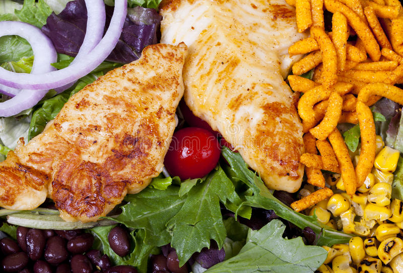 Grilled Chicken Salad. Stock Image