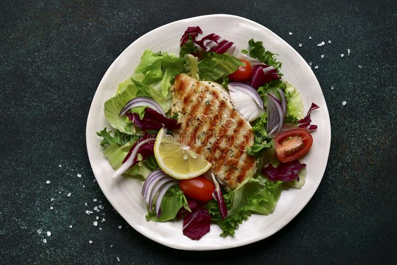 Grilled chicken or turkey breast with fresh vegetable salad.Top view with copy space royalty free stock photography