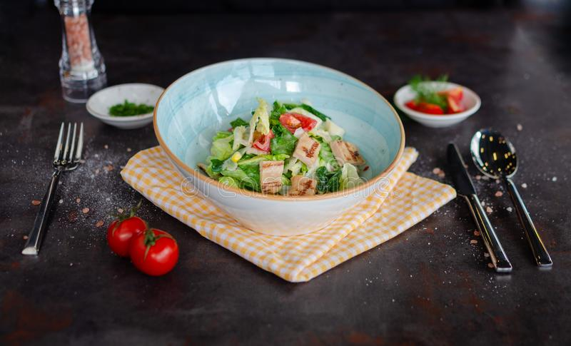 Grilled chicken vegetable salad with soft cheese royalty free stock image