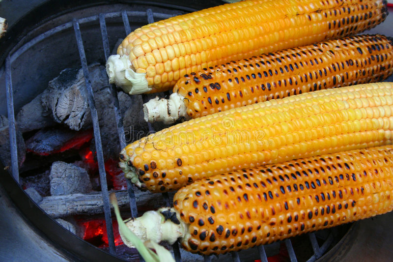 Download Grilled corn stock photo. Image of harvest, natural, agriculture - 6230540