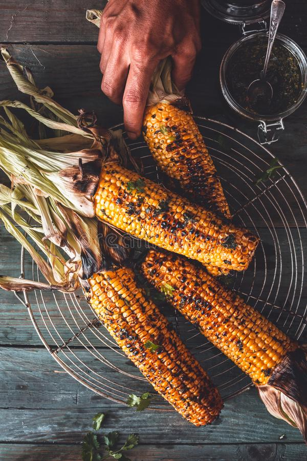 Grilled Corn on Cob with Chimichurri sauce royalty free stock image