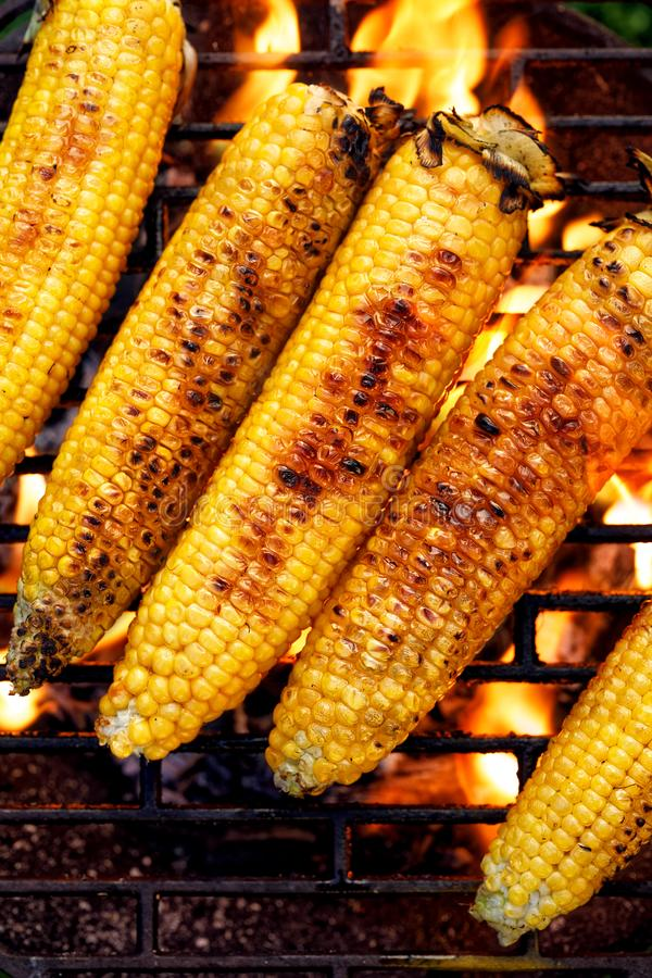 Grilled corn on the cob. Grilled corn on the grill plate, top view. stock photo