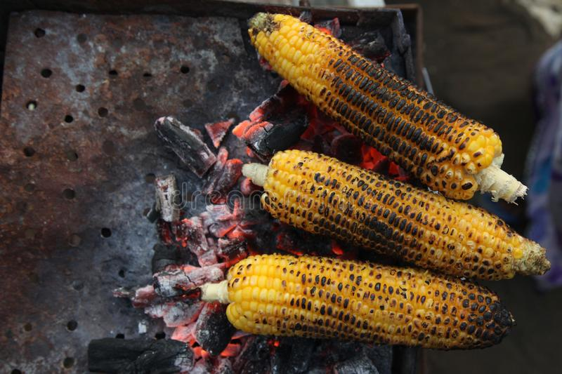 Fresh roasted or grilled corncobs. Grilled Corn for sale on the street. Grilled corncobs. Grilled Corn for sale on the street stock images