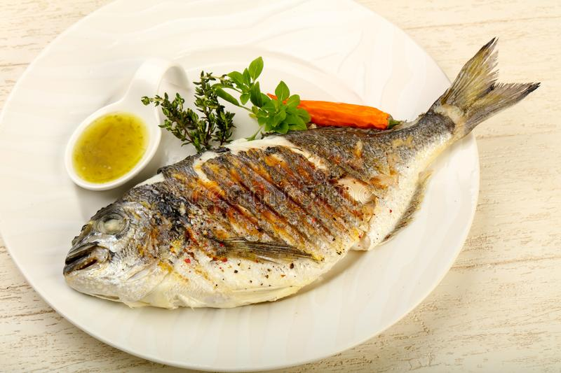 Grilled dorado fish. With sauce, thyme and basil royalty free stock photo