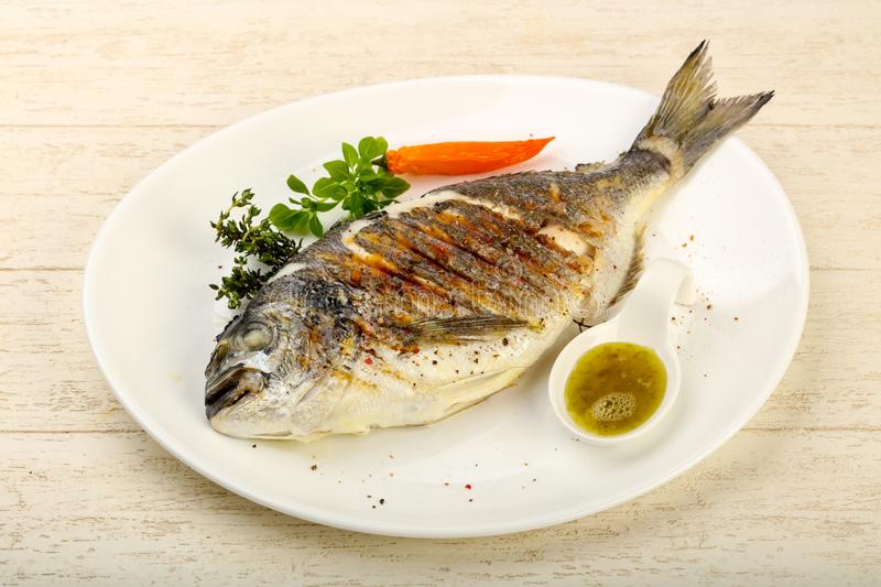 Grilled dorado fish. With sauce, thyme and basil royalty free stock image