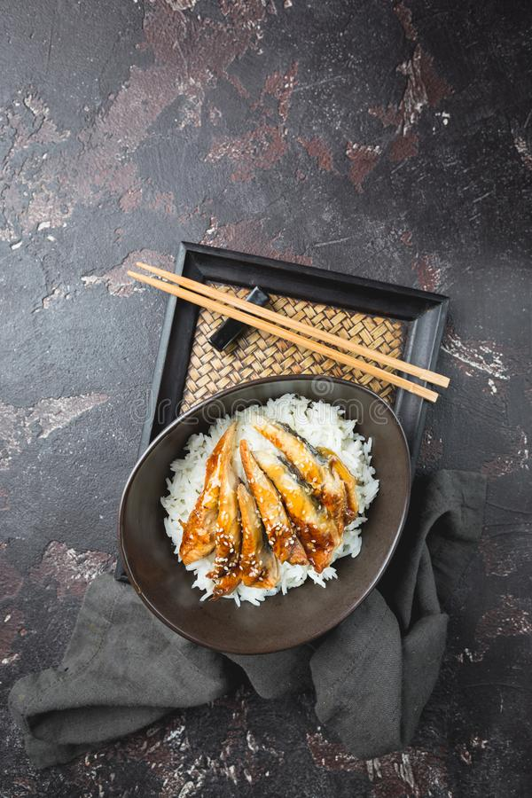 Grilled eel with rice royalty free stock photo