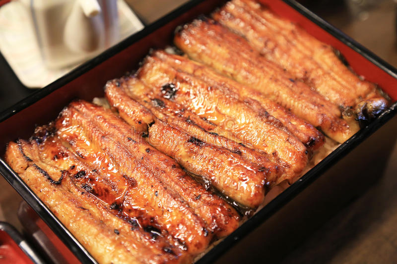 Grilled eel on rice royalty free stock photo