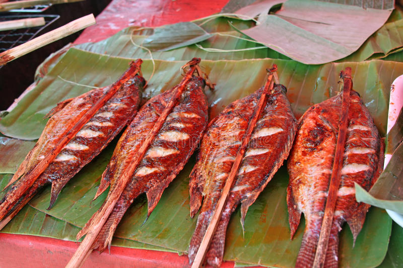 Download Grilled Fish Stock Image - Image: 13523721