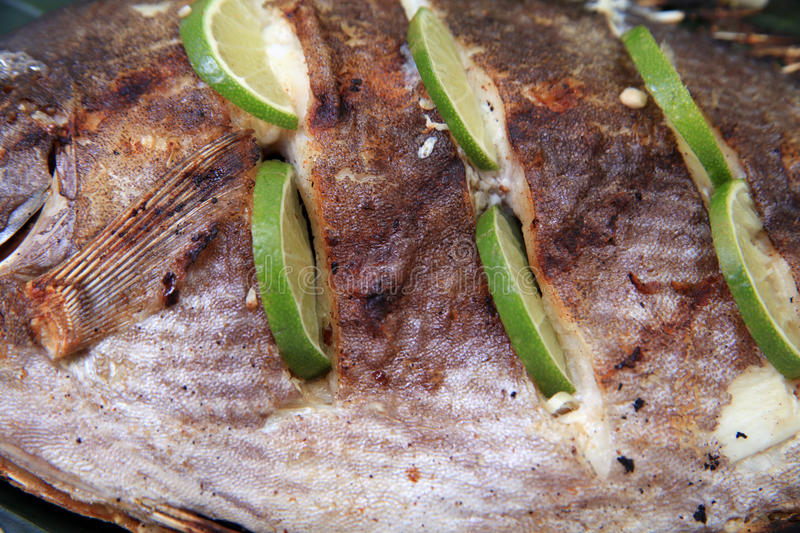 Download Grilled fish close up stock image. Image of close, skin - 20460683