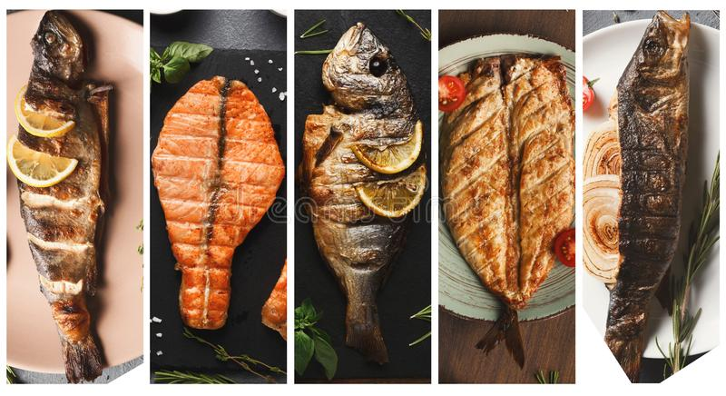 Grilled fish dishes collage including sea bass, dorado, salmon steak. stock images