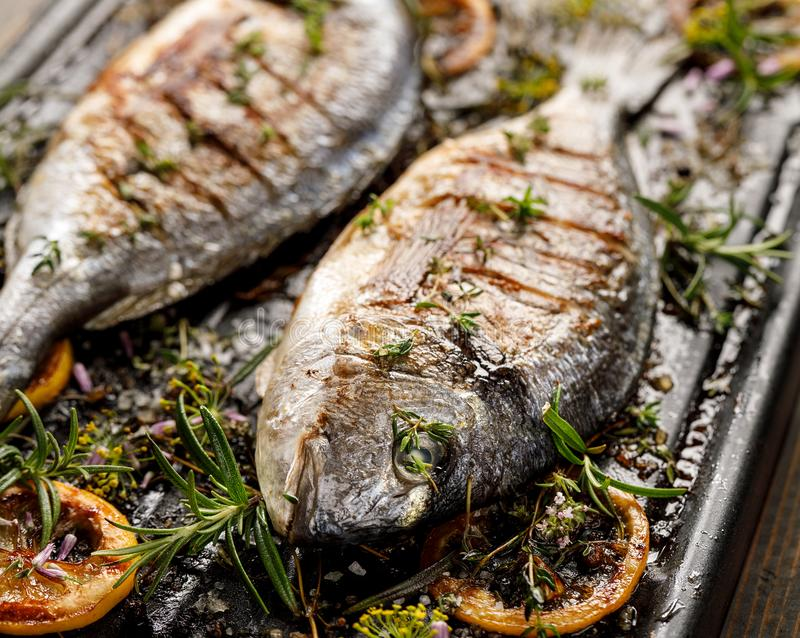 Grilled fish with herbs and lemon on a grill plate, close up view. royalty free stock photos