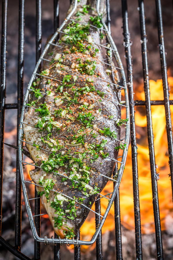 Grilled fish on the rack. Grilled fish on old rack royalty free stock photos
