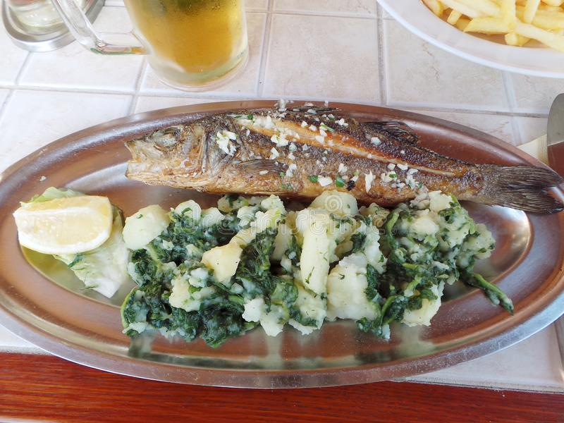 Grilled fish sea bass with boiled potato and mangold on plate stock photography