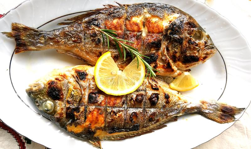 Grilled fish, sea bream, dorada on the plate. With lemon slice royalty free stock image