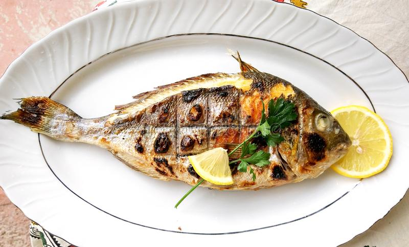 Grilled fish, sea bream, dorada on the plate stock photo