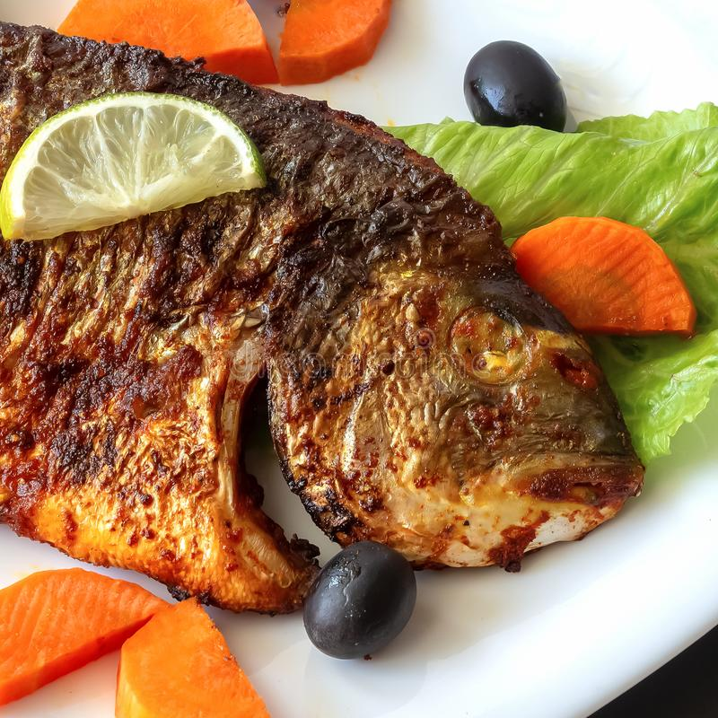 Grilled fish sea bream with vegetables on white plate. White background. Healthy diet food concept stock image