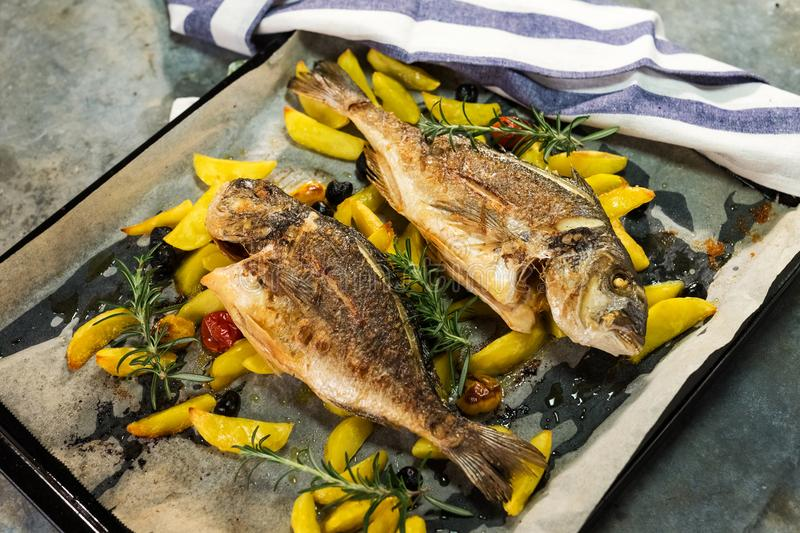 Grilled gilt-head bream. With potato royalty free stock photos