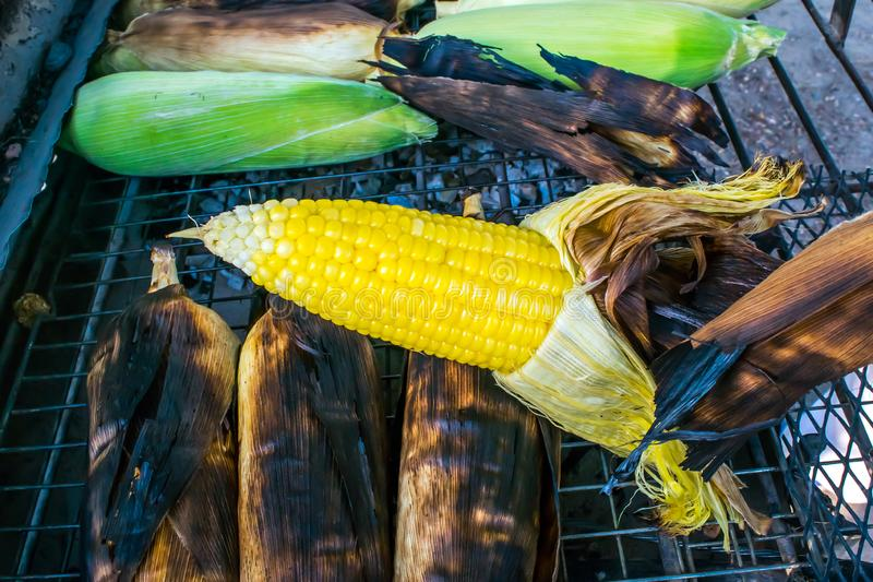 Grilled hot corn on the cob slathered with butter and salt royalty free stock photo