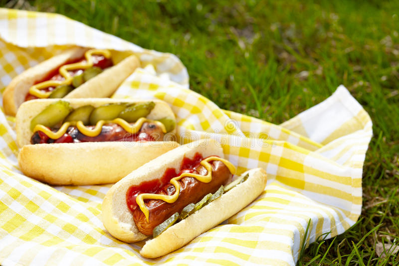 Grilled hot dogs with mustard, ketchup and relish. On a picnic table royalty free stock photos