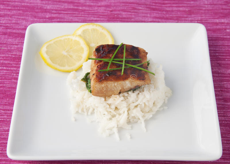 Download Grilled Mahi Mahi stock photo. Image of elegance, decorative - 20113866