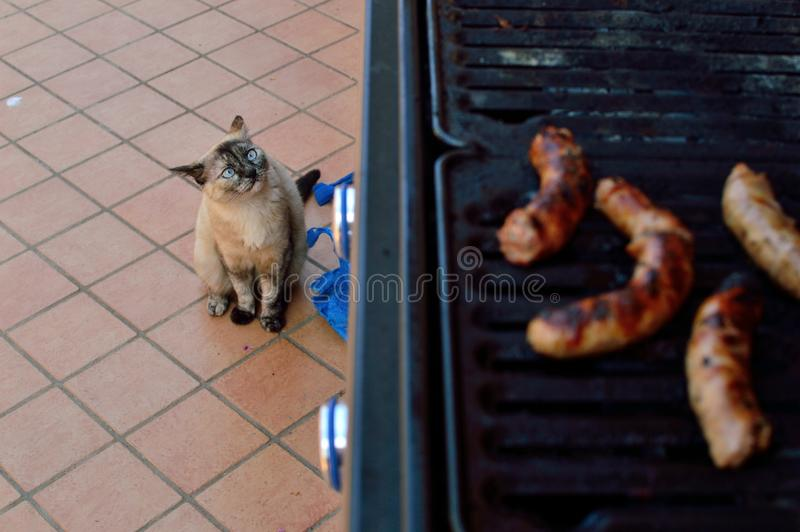 Grilled meat on the barbecue outside the house terrace royalty free stock photography