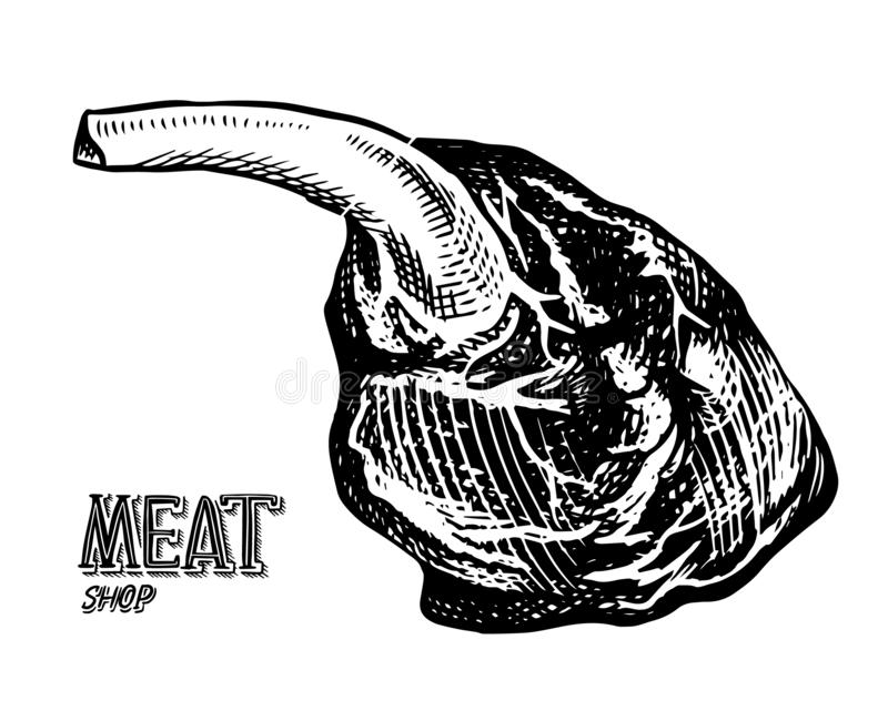 Grilled meat, BBQ Pork or beef leg. Barbecue food in vintage style. Template for restaurant menu, emblem or badge. Hand royalty free illustration