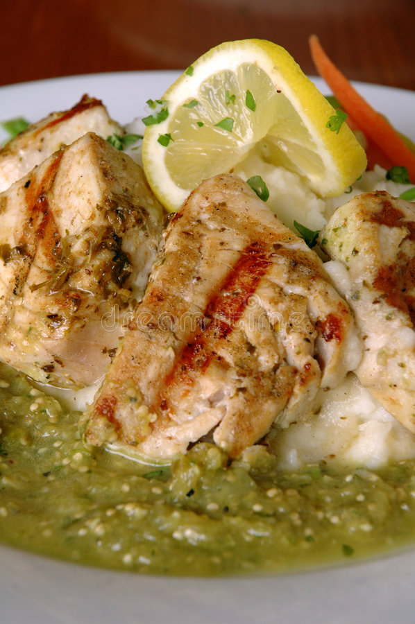 Download Grilled mole Chicken stock photo. Image of sauce, halibut - 5130484