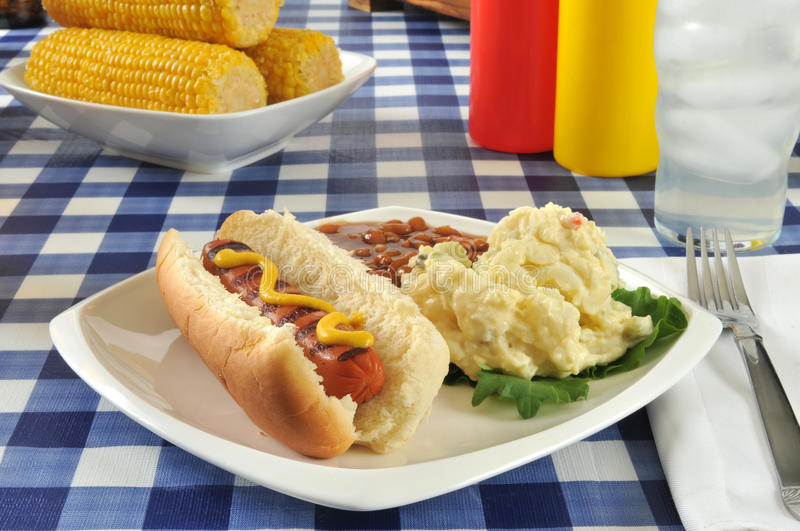 Grilled mustard dog stock photo