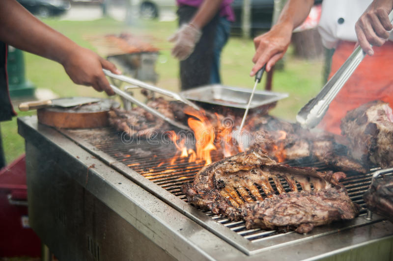 Download Grilled Mutton Royalty Free Stock Photo - Image: 26526615